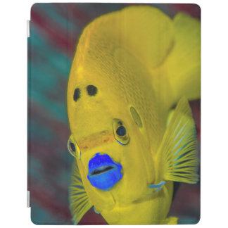 Close-up of Angelfish iPad Cover