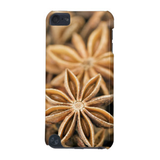 Close-Up Of Aniseed (Pimpinella Anisum) iPod Touch (5th Generation) Case
