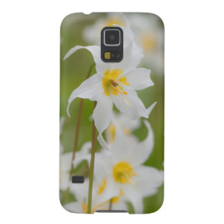 Close-up of avalanche lilies galaxy s5 covers