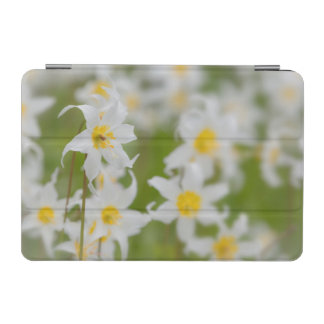 Close-up of avalanche lilies iPad mini cover