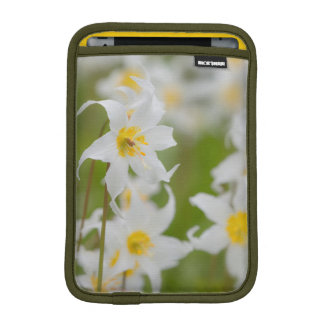 Close-up of avalanche lilies iPad mini sleeve