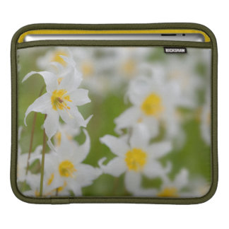 Close-up of avalanche lilies iPad sleeve
