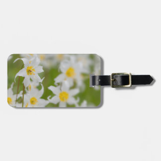 Close-up of avalanche lilies luggage tag