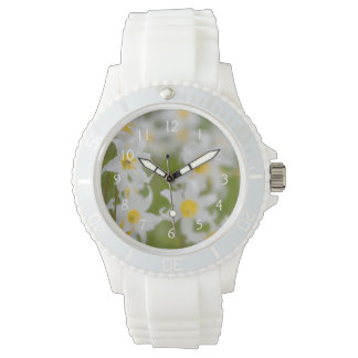 Close-up of avalanche lilies watch
