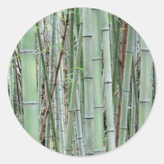 Close-up of bamboo grove classic round sticker