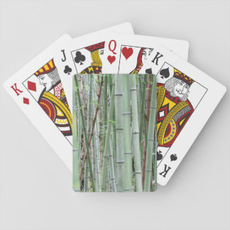 Close-up of bamboo grove poker deck