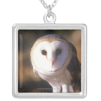 'Close-up of Barn Owl, Land Between Lakes, KY' Silver Plated Necklace