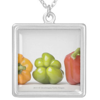 Close-up of bell peppers in a row silver plated necklace