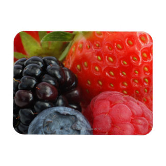 Close-up of blackberry, blueberry and rectangular photo magnet