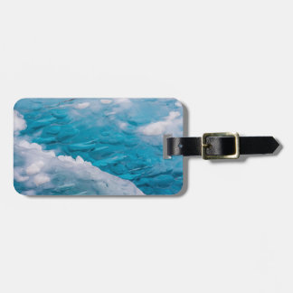 Close-up of blue ice luggage tag