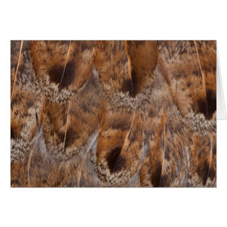 Close Up Of Brown Feathers Card