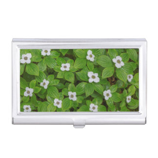 Close-up of bunchberry with white flowers business card holder