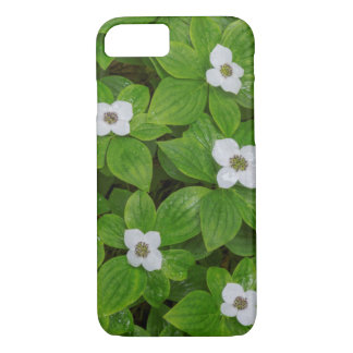 Close-up of bunchberry with white flowers iPhone 8/7 case