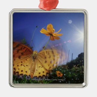Close-up of Butterfly, flapping wings Christmas Ornament