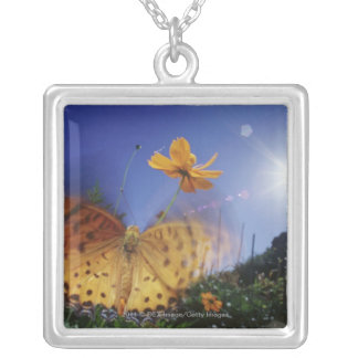 Close-up of Butterfly, flapping wings Silver Plated Necklace
