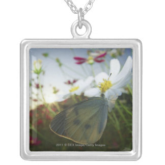 Close-up of butterfly on flower silver plated necklace