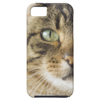 Close-up of cat (focus on eye) tough iPhone 5 case