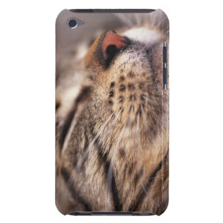 Close-up of cat whiskers and muzzle iPod Case-Mate cases