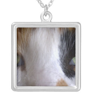 Close-up of cat's eyes silver plated necklace