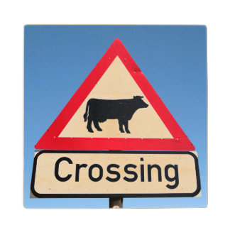 Close-Up Of Cattle Crossing Sign. Western Cape Wood Coaster