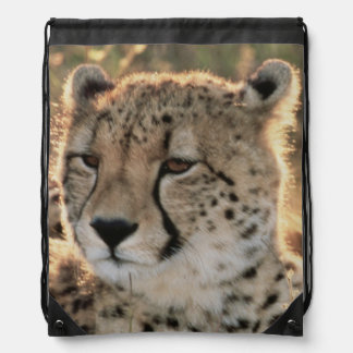 Close-up of Cheetahs Drawstring Bag