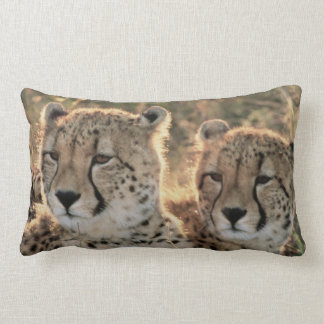 Close-up of Cheetahs Lumbar Cushion