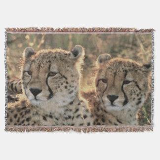 Close-up of Cheetahs Throw Blanket