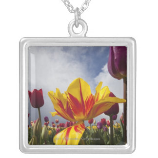 Close Up of Colorful Blooming Tulips In Oregon Silver Plated Necklace
