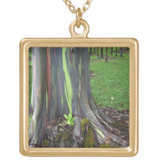 Close-up of colorful eucalyptus tree bark gold plated necklace