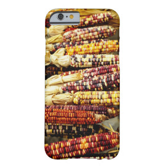 Close-up of colorful Indian corn in shop in Barely There iPhone 6 Case