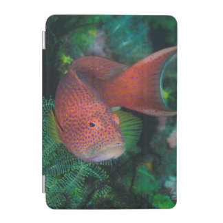 Close-up of Coral Trout iPad Mini Cover