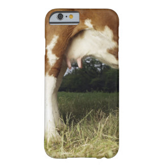 Close up of cow in rural landscape barely there iPhone 6 case