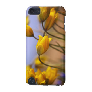 Close-up of daffodils iPod touch (5th generation) case