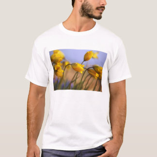 Close-up of daffodils T-Shirt