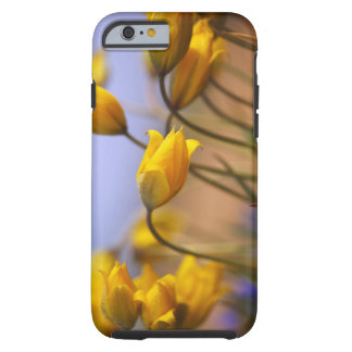 Close-up of daffodils tough iPhone 6 case