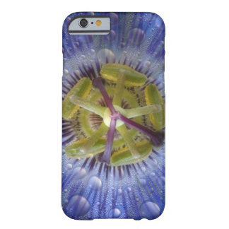 Close-up of dewy passion flower. Credit as: Don Barely There iPhone 6 Case