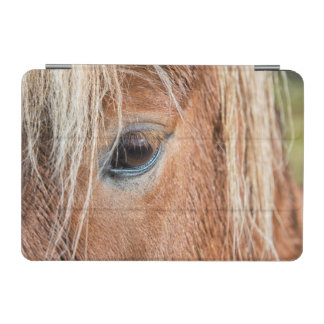 Close-up of eye and head of Icelandic horse iPad Mini Cover