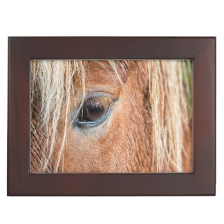 Close-up of eye and head of Icelandic horse Keepsake Box