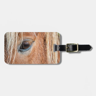 Close-up of eye and head of Icelandic horse Luggage Tag