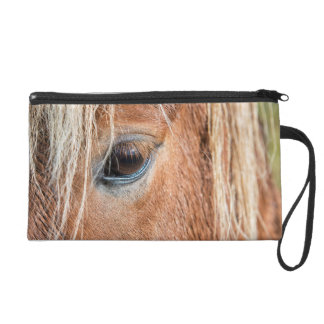 Close-up of eye and head of Icelandic horse Wristlets
