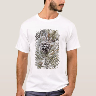 Close-up of frozen pine cone, Yellowstone T-Shirt