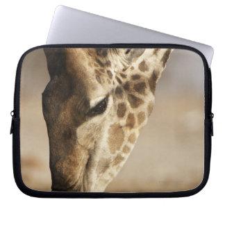 Close up of Giraffe (Giraffa camelopardalis) Laptop Sleeve