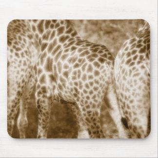 Close-Up of Giraffes Kruger National Park South Mouse Mat