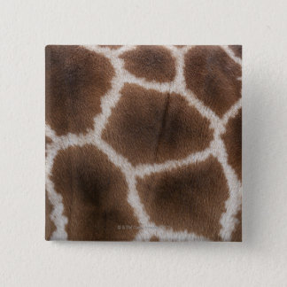 Close up of Giraffes Skin 15 Cm Square Badge