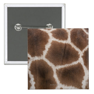Close up of Giraffes Skin 15 Cm Square Badge