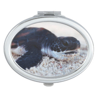 Close-Up of green sea turtle hatchings 1 Travel Mirrors