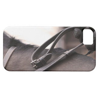 close-up of hand holding reins of horse barely there iPhone 5 case