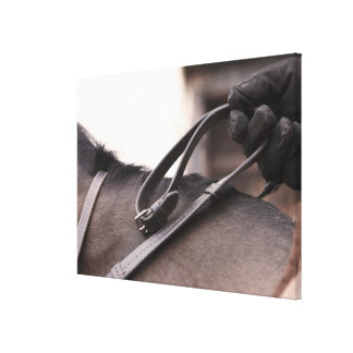 close-up of hand holding reins of horse canvas print