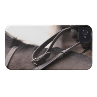 close-up of hand holding reins of horse iPhone 4 cases