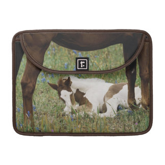 Close-up of Horse and Baby Colt Sleeve For MacBook Pro